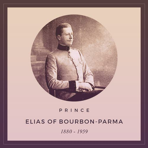 Prince Elias of Bourbon-Parma, 1880-1959. He's sitting in a chair, wearing a simple military uniform with a high black collar and cuffs. | From Archduchess Maria Anna of Austria's Tiara on GirlInTheTiara.com.